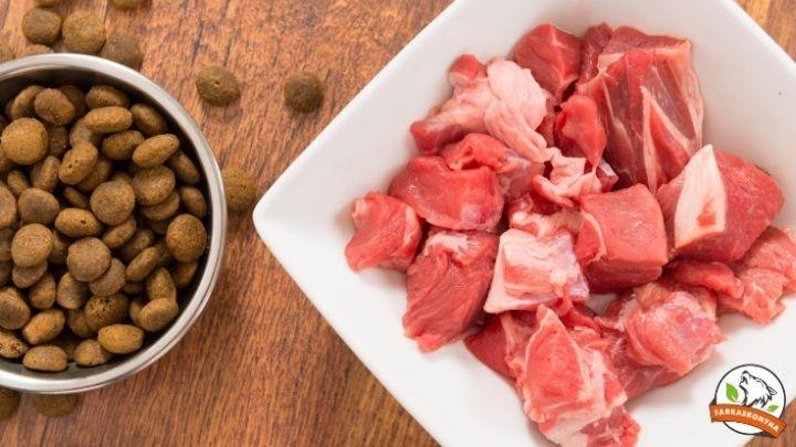 Vegyesen etetsz tápot és nyers húst? Mikor ne tedd?
